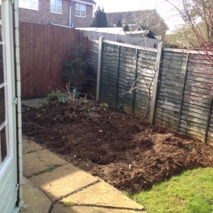 Before - Veg patch